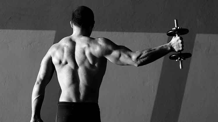 Build muscles with Thermakor