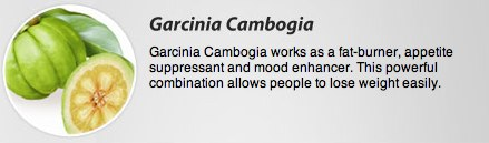 all about Garcinia Cambogia