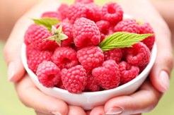 raspberry ketone in Hydroxycut