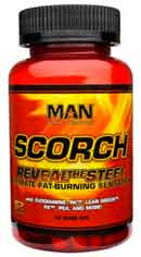 Man scorch review